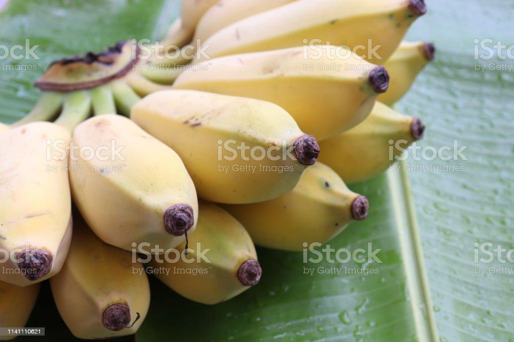 Ripe bananas on green banana leaf background