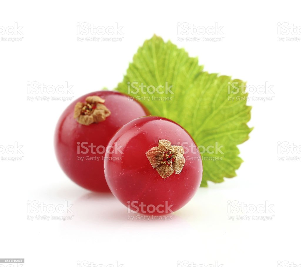 Ripe berry of currant stock photo