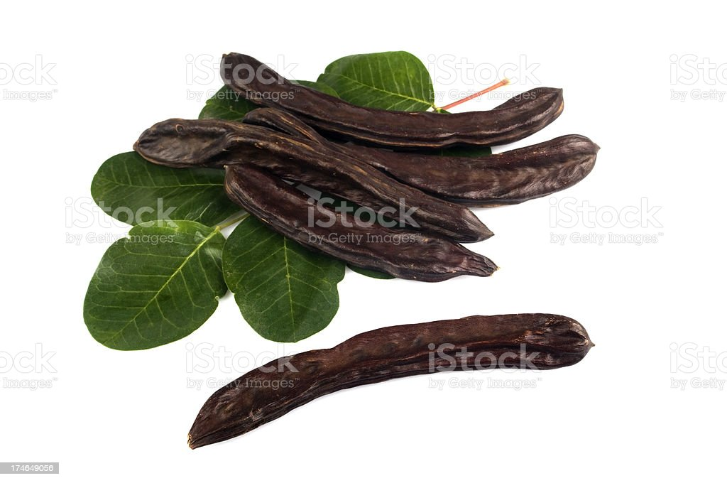 Ripe carob pods royalty-free stock photo