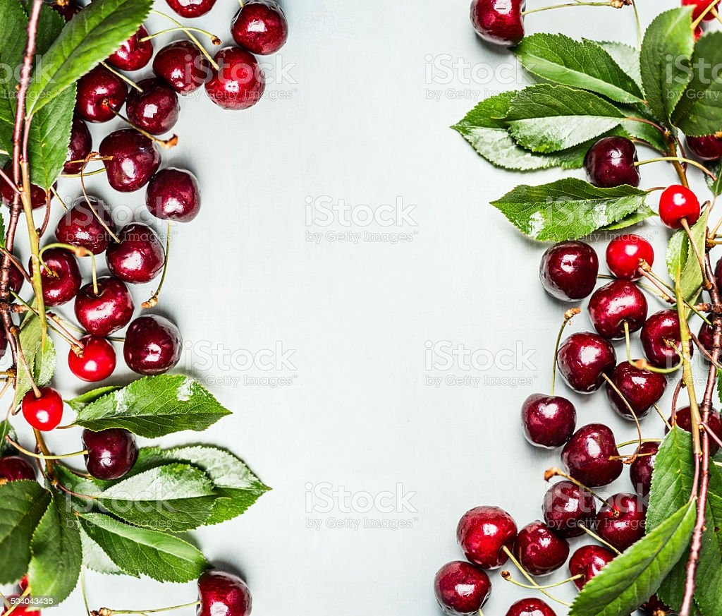 Ripe cherries with branches and leaves , top view, frame stock photo