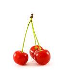 Juicy ripe cherry isolated on white