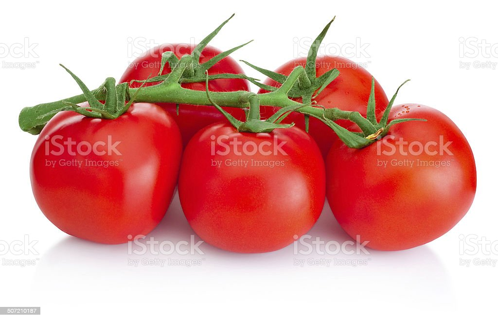 Ripe Cherry tomatoes on branch isolated on white background stock photo