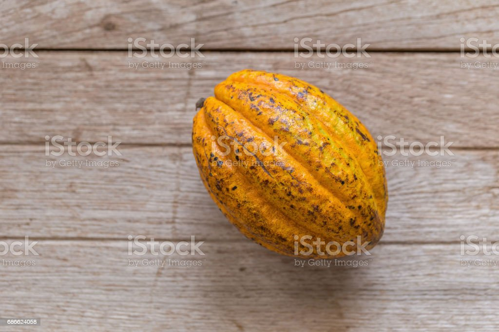 Ripe cocoa pod on rustic wooden background royalty-free stock photo