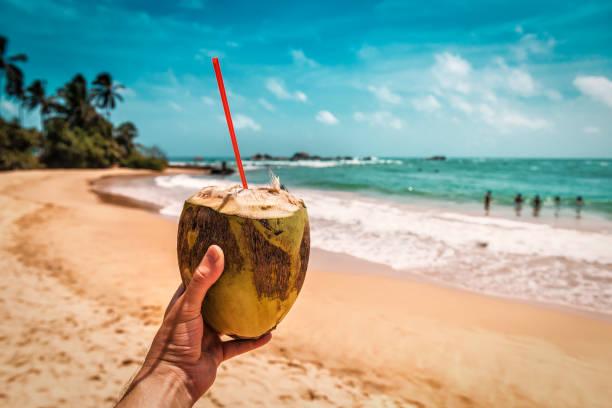 ripe coconut in the hand stock photo