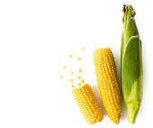Ripe corn in the leaves and brushed with scattered seeds on a white background. The view from the top.