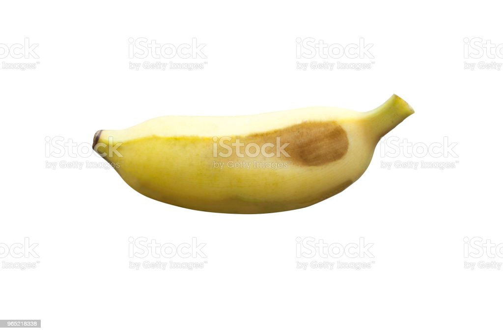 A ripe cultivated banana on white background with clipping path royalty-free stock photo
