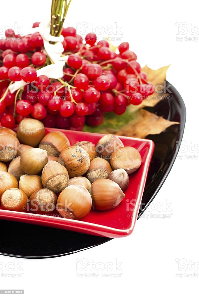 ripe fruit plants viburnum and hazelnut royalty-free stock photo