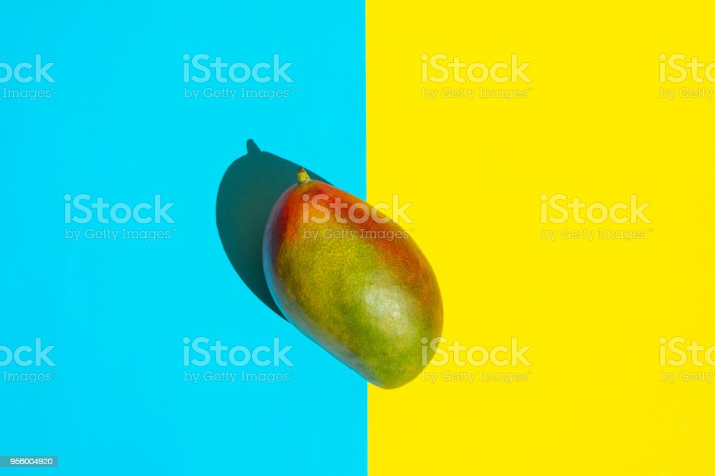 Ripe Green and Red Mango on Split Duotone Yellow Blue Background. Styled Creative Image. Bright Harsh Sunlight Deep Shadows. Tropical Fruits Vacation Summer Beach Party Vegan. Poster Banner Streamer stock photo