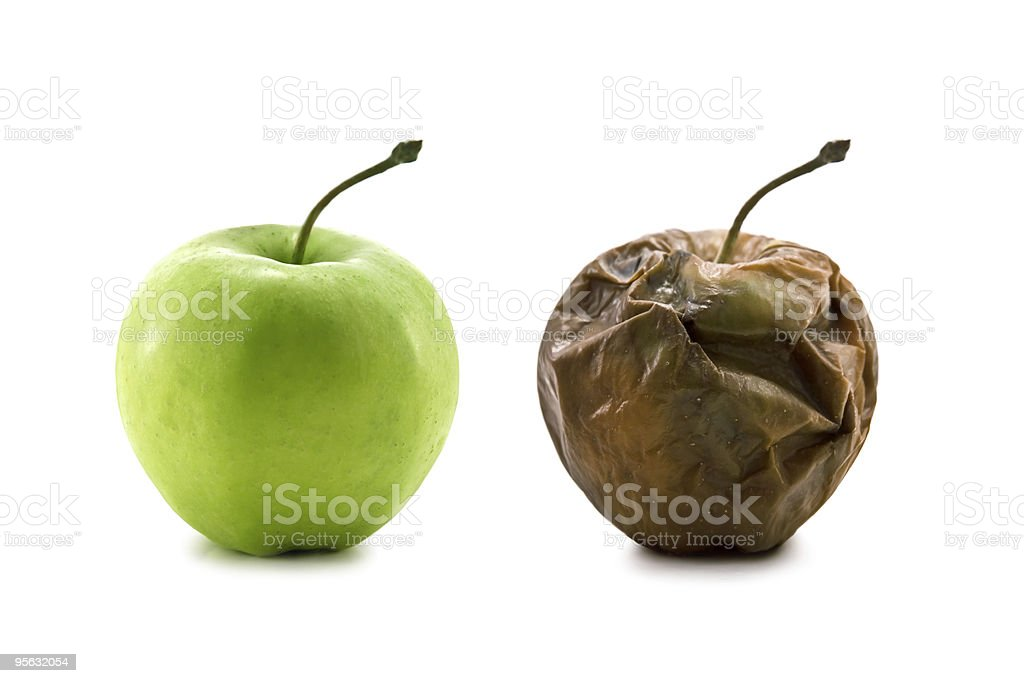 Ripe green apple and rotted brown apple isolated on white stock photo