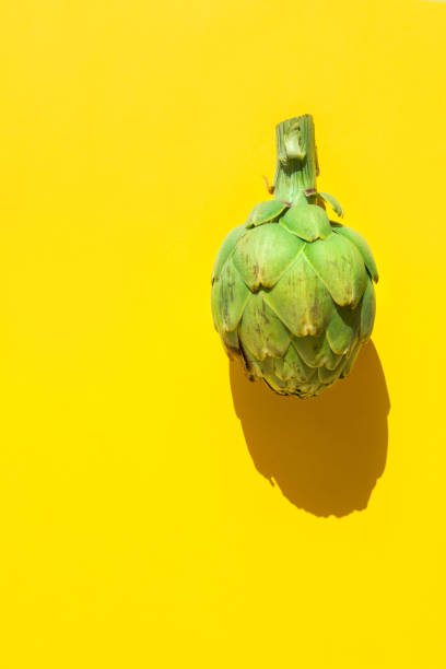 Reife grüne Artischocke auf solidem gelbem Hintergrund. Hartes Licht raue Schatten. Trendiger funky minimalistischer Stil. Kreatives Lebensmittel-Plakat. Gesunde, pflanzliche Diät mediterrane Küche. Kopierplatz – Foto