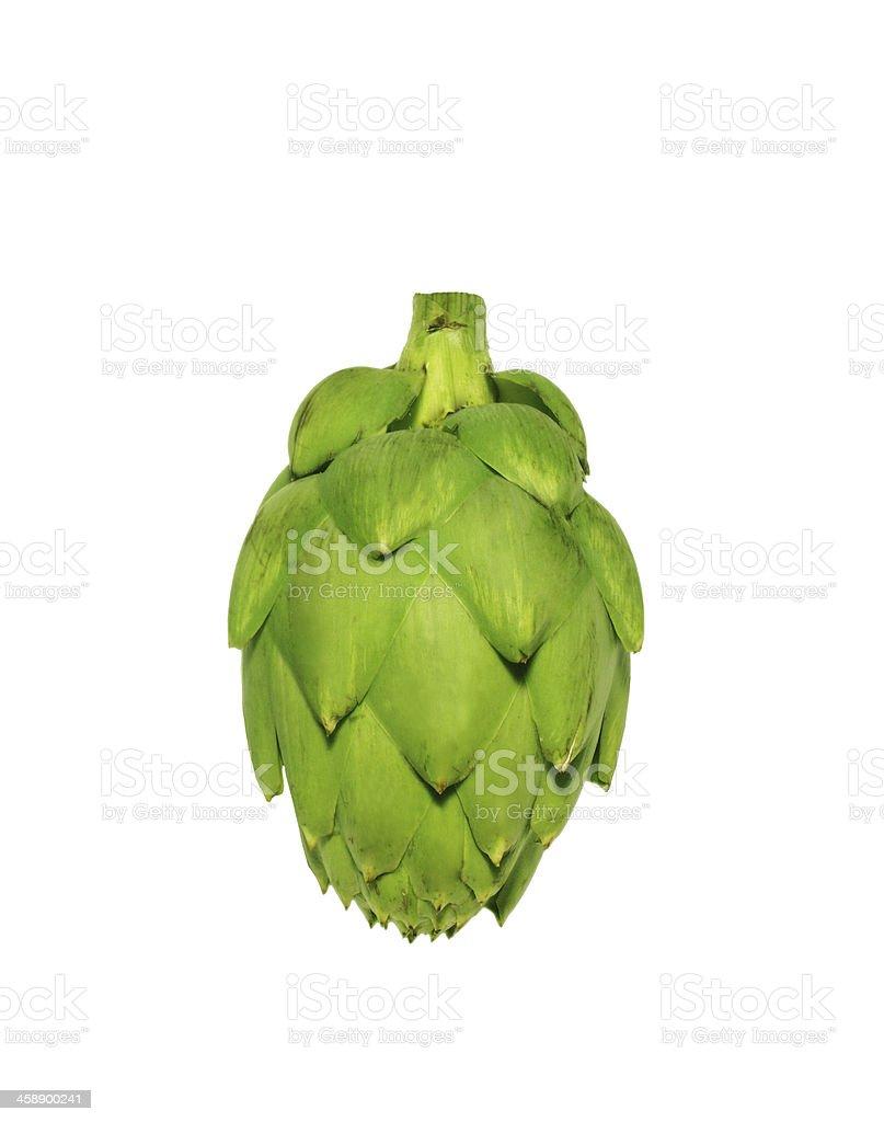Ripe green artichoke vegetable isolated on white background stock photo