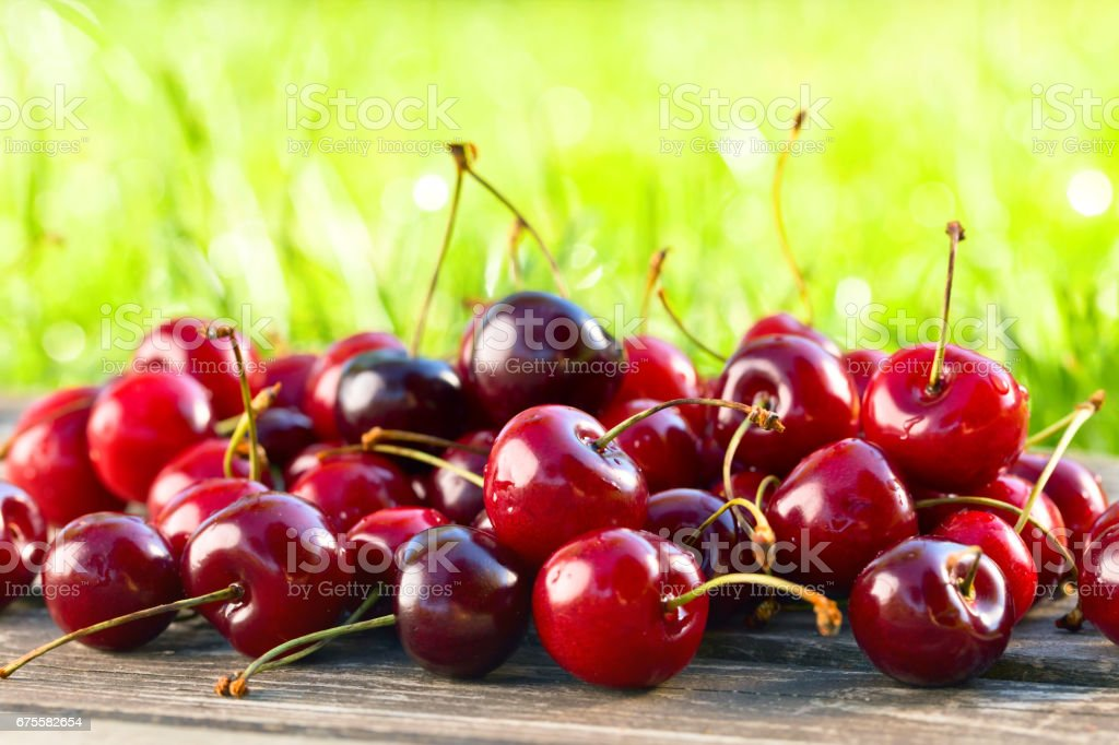 Ripe juicy cherries in garden foto de stock royalty-free