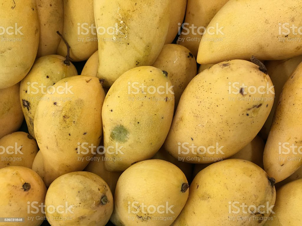 Ripe Mango royalty-free stock photo