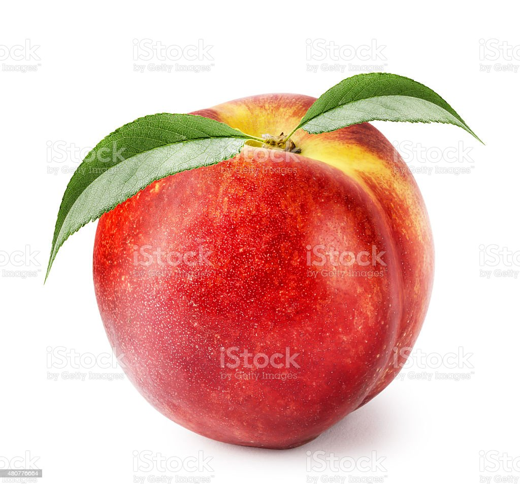 Ripe nectarine with green leaves stock photo
