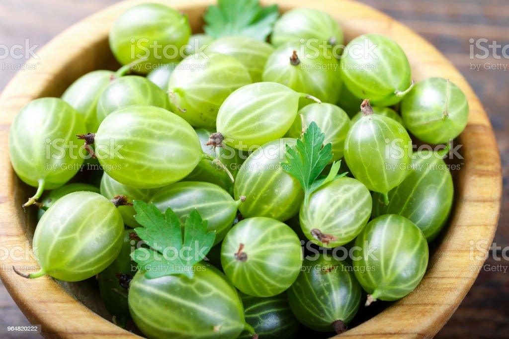 ripe of gooseberry in a plate. harvest of berries on a wooden background. royalty-free stock photo