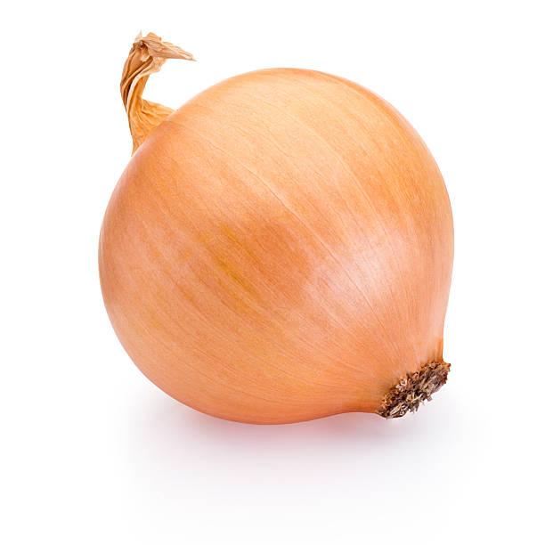 Ripe onion isolated on white background stock photo