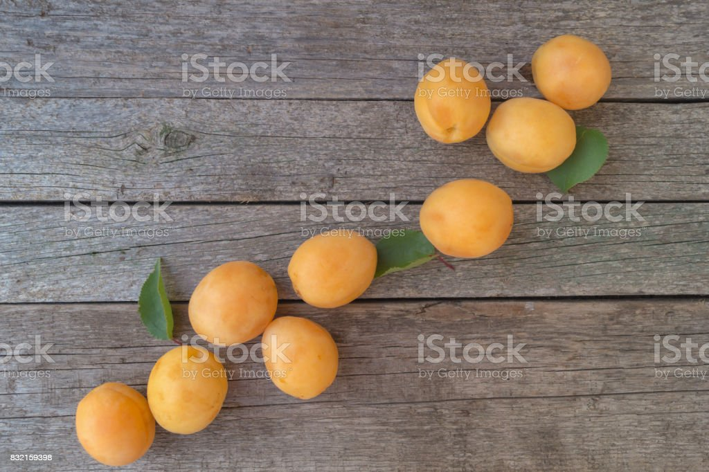 Ripe orange apricots are located diagonally on the grey wooden background. Growth and development concept stock photo