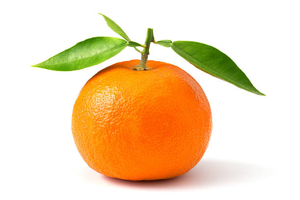 Ripe orange stock photo