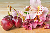 Ripe Organic Cherries on Wooden Table Decorated with Spring Flower