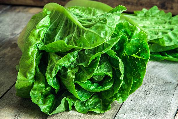 ripe organic green salad Romano ripe organic green salad Romano on rustic wooden background butterhead lettuce stock pictures, royalty-free photos & images