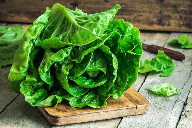ripe organic green salad romano - lettuce stock photos and pictures