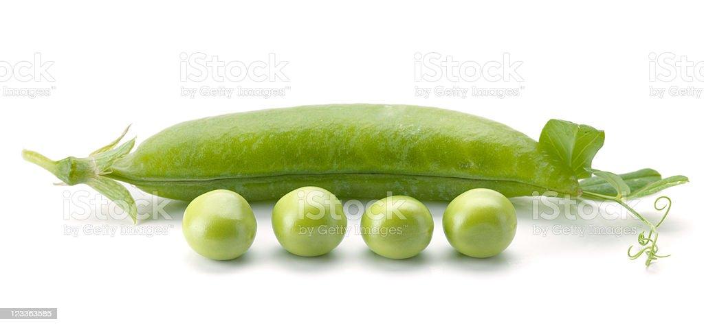 Ripe pea vegetable royalty-free stock photo