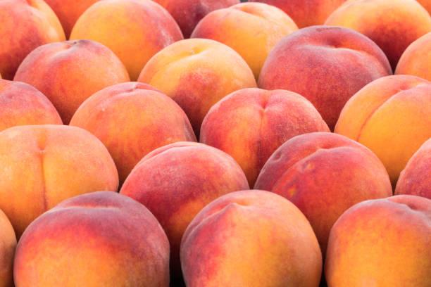 成熟的桃子果實的背景, 關閉。選擇性對焦。 - 桃 個照片及圖片檔