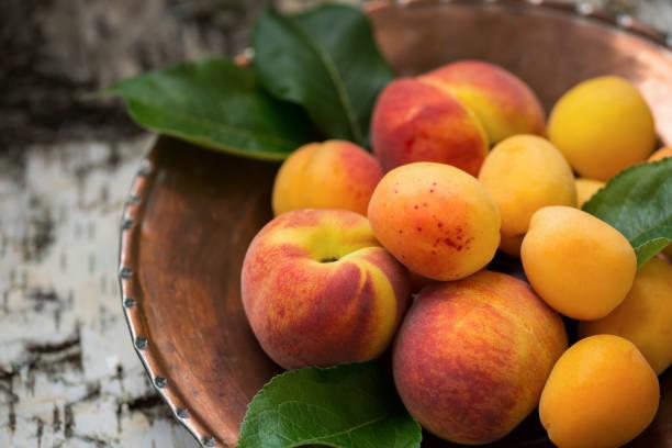reife pfirsiche und aprikosen auf einer kupferplatte und dem textuellen natürlichen holzhintergrund - aprikose stock-fotos und bilder
