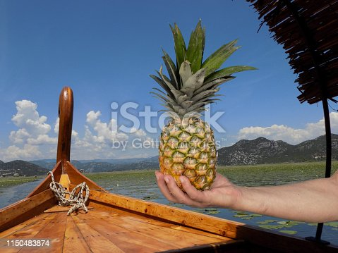 Ripe pineapple in the hand