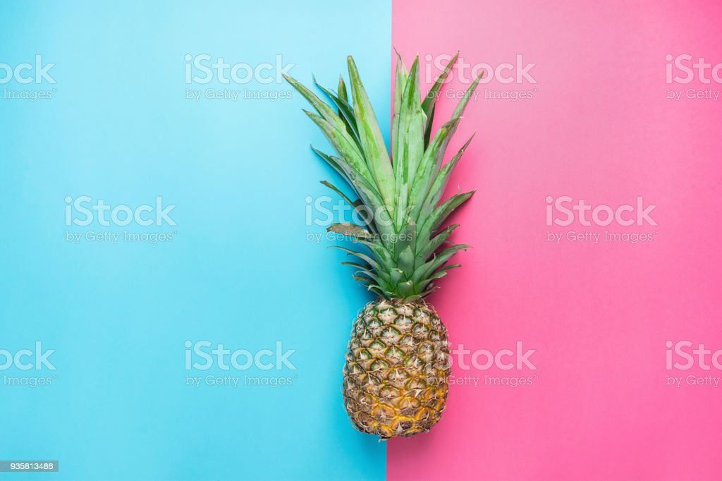 Ripe Pineapple with Bushy Green Leaves on Split Duotone Pink Blue Background. Summer Vacation Travel Tropical Fruits Vitamins Fashion Concept. Flat Lay Copy Space stock photo