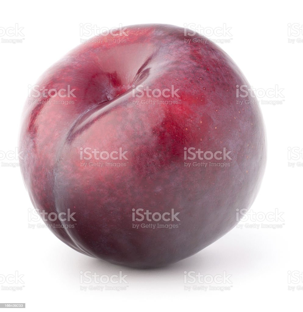 Ripe plum  fruit royalty-free stock photo