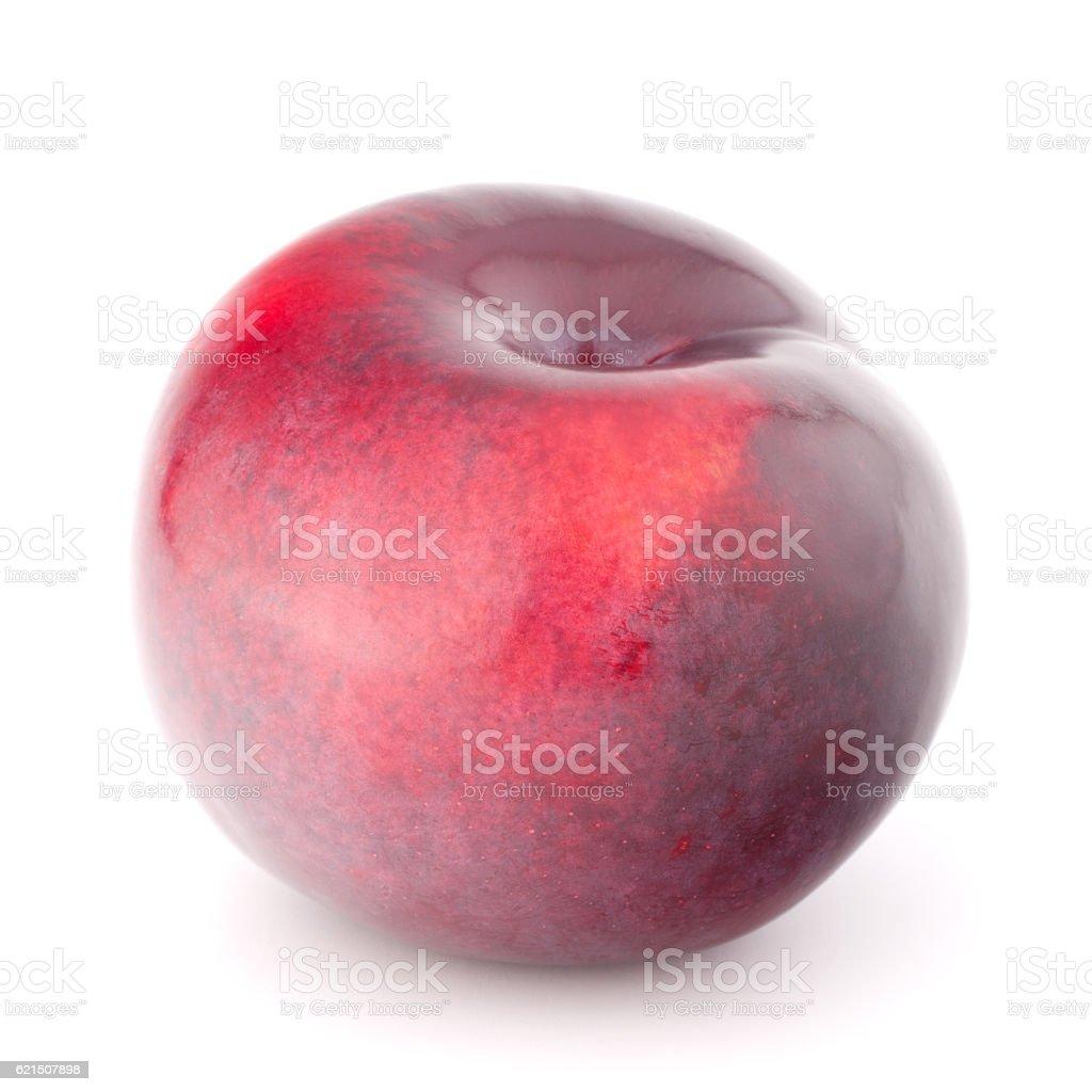 Maturo frutta Prugna foto stock royalty-free