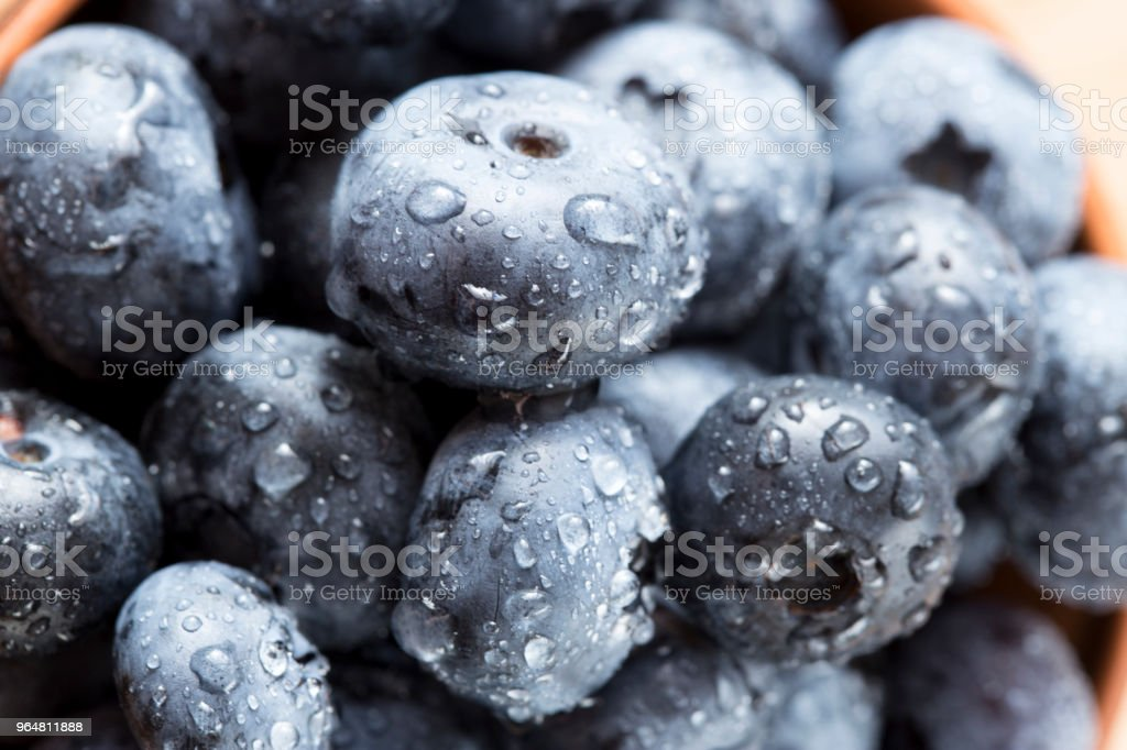 ripe plums organic in water drops, close-up royalty-free stock photo