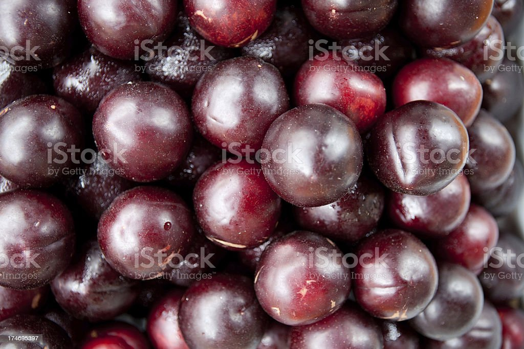 ripe plums royalty-free stock photo