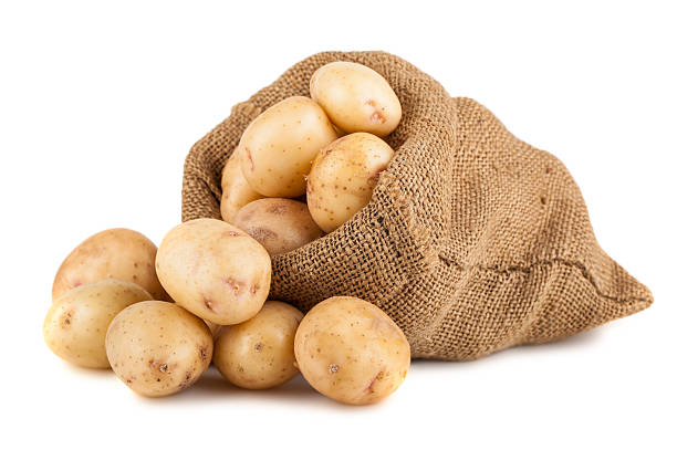 Ripe potato in burlap sack stock photo