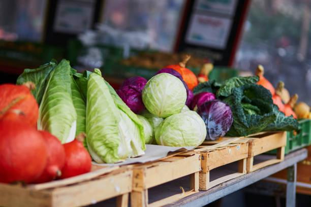 zucche mature e cavoli sul mercato agricolo contadino - bancarella foto e immagini stock