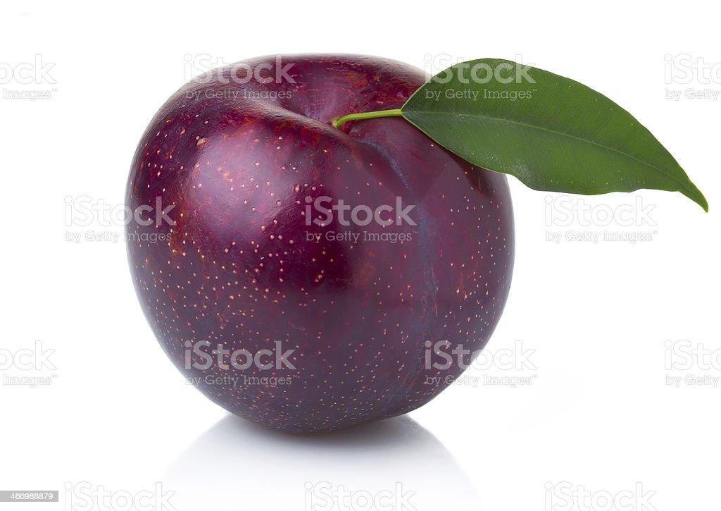Maduro púrpura plum frutas con hojas aisladas verde foto de stock libre de derechos