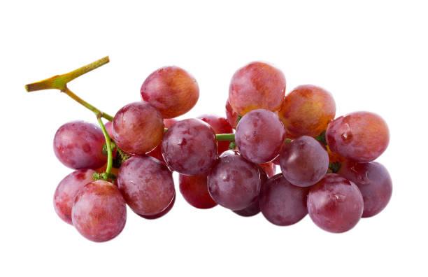 uva madura rojo aislado sobre fondo blanco - grapes fotografías e imágenes de stock