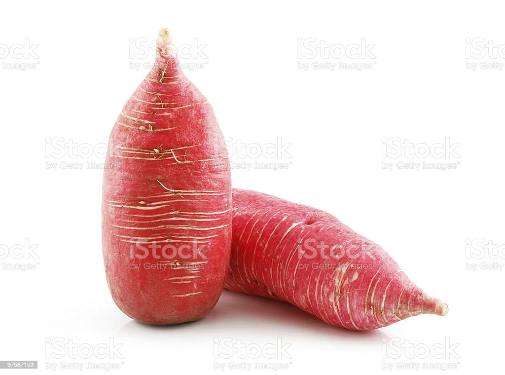Ripe Red Radish Vegetable Isolated on White royaltyfri bildbanksbilder