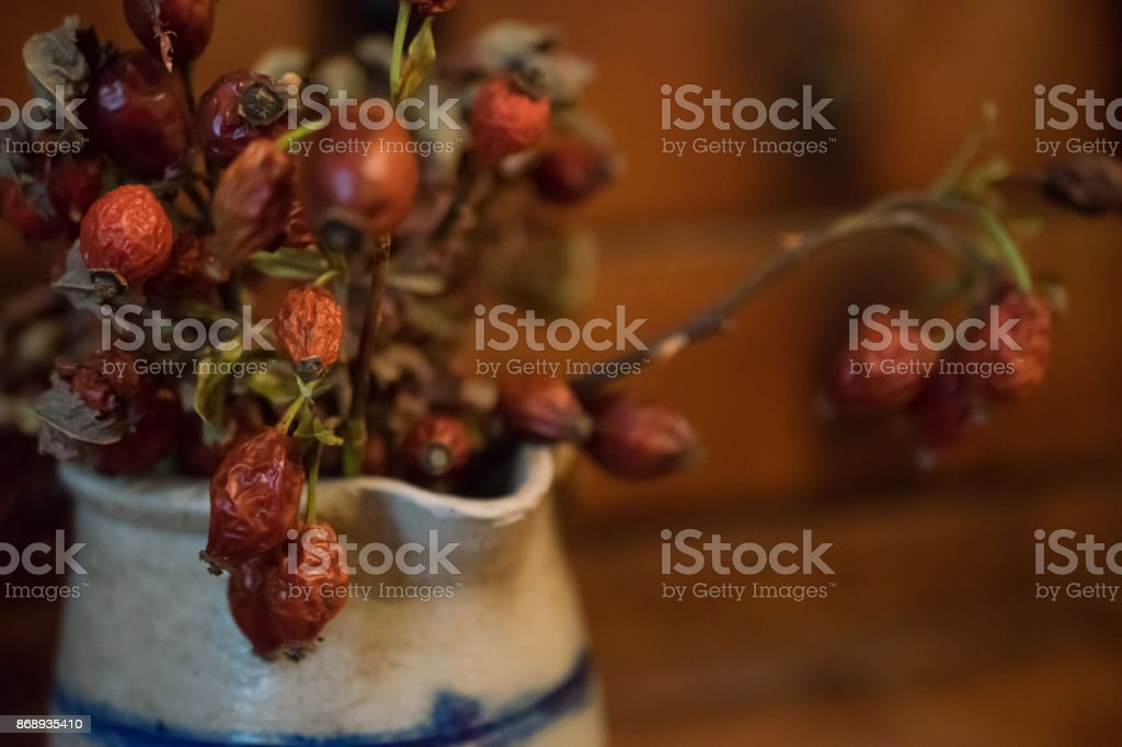 Ripe red rose hips in a jar stock photo