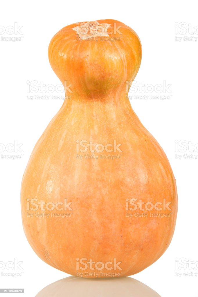 Ripe the entire pumpkin close up isolated on white. foto stock royalty-free