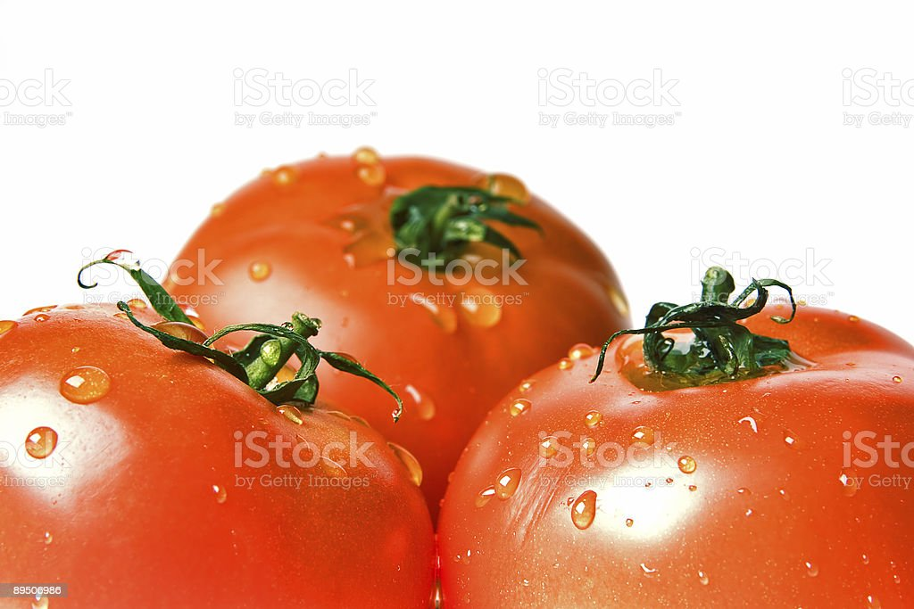 ripe tomatoes covered drops royalty-free stock photo