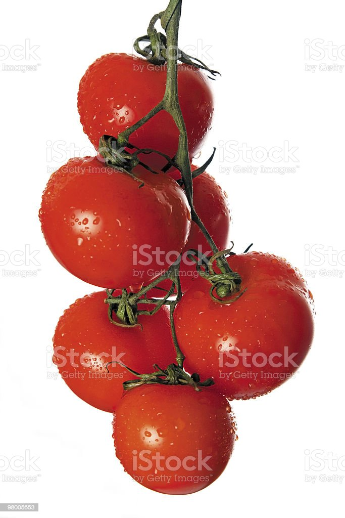 Ripe tomatoes on green branch royalty free stockfoto