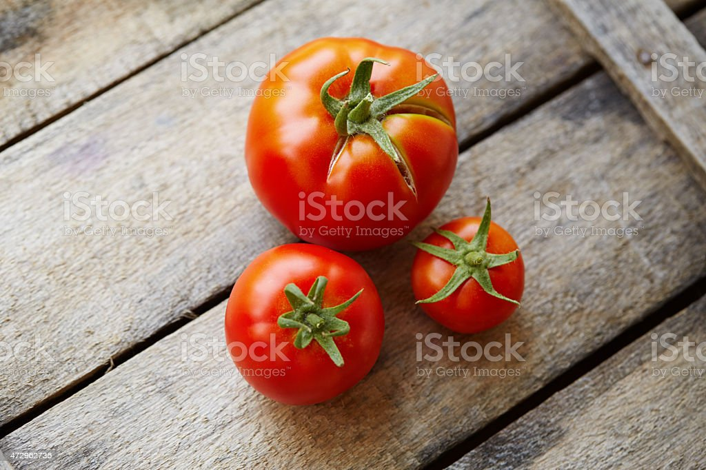 Ripe tomatoes stock photo