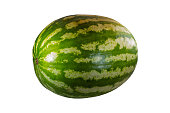 ripe watermelon whole berry big tasty on a white background