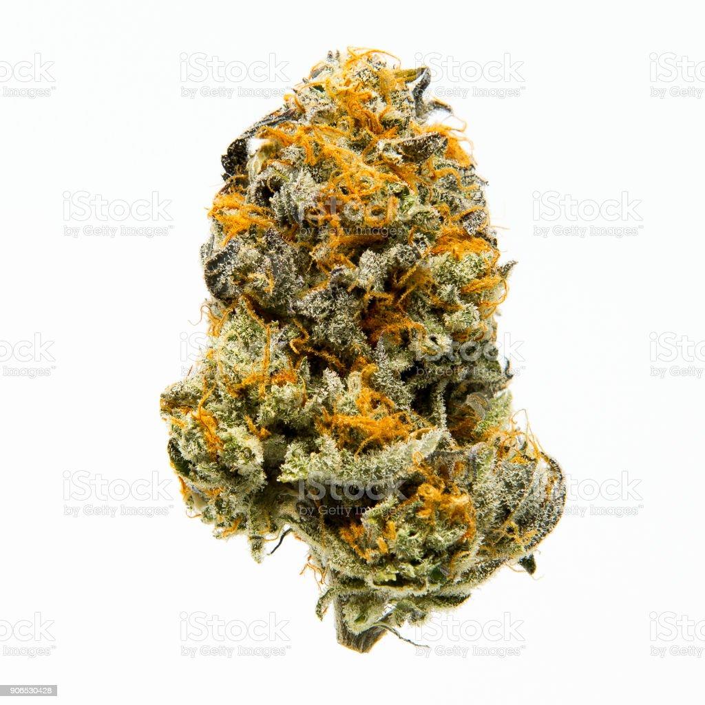 Ripped Bubba Cannabis stock photo