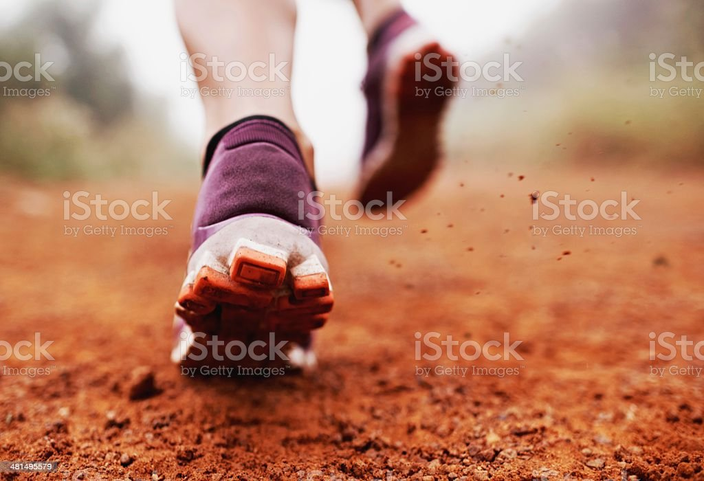 Ripping up the trail royalty-free stock photo