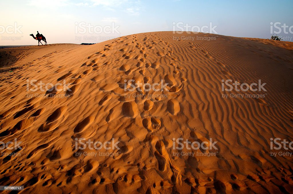 Rippled sand dunes at sunset stock photo