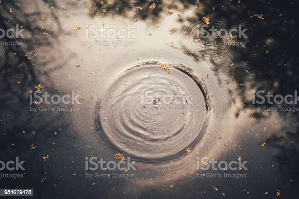 Photo of Rippled Water Surface