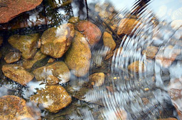 fale i odbicia w kamienistym stawie - staw woda stojąca zdjęcia i obrazy z banku zdjęć